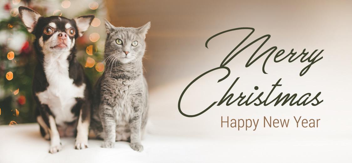 Sretne i blagoslovljene blagdane želi Vam Husse tim!