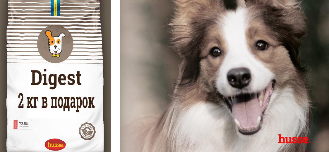 Покупая 15 кг корма для собак  2 кг получаешь в подарок