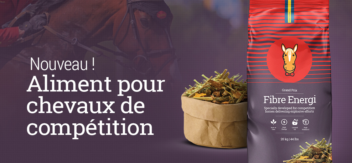 Chevaux aliment competition