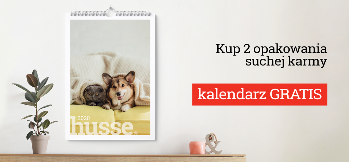 Promocja kalendarz husse 2020 gratis
