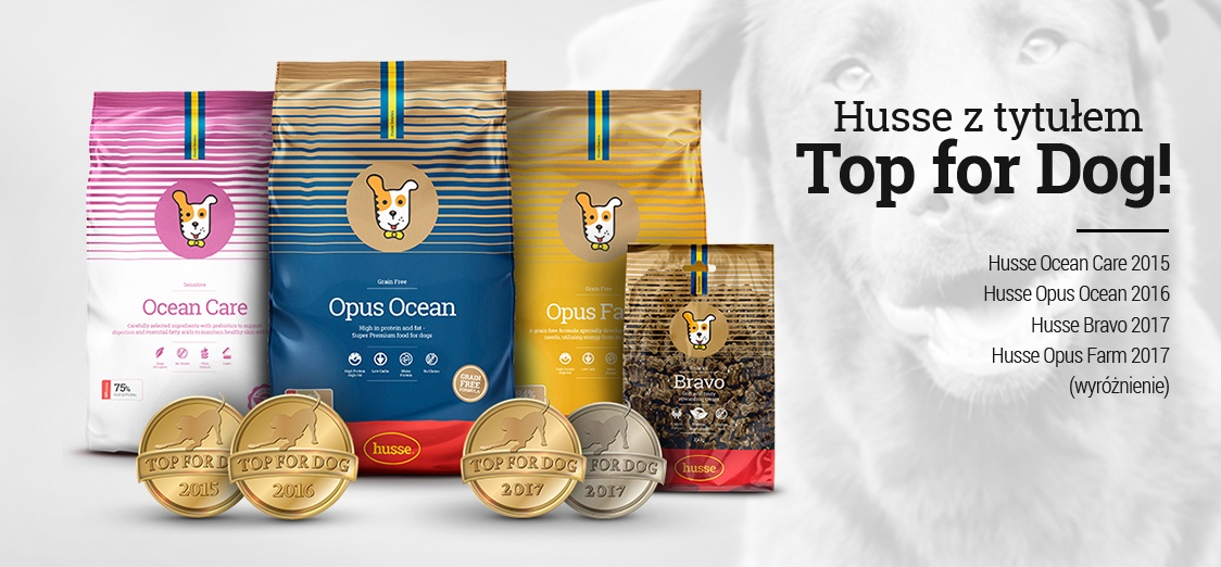 Nagrody Top for Dog
