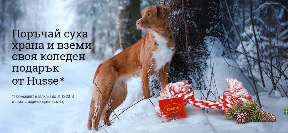 Коледа с Husse България