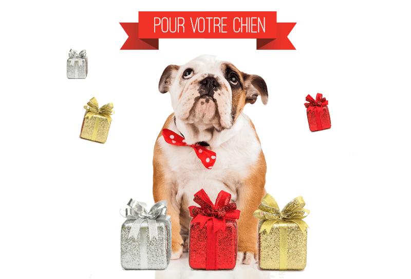 Idées cadeaux de Noël pour votre chien