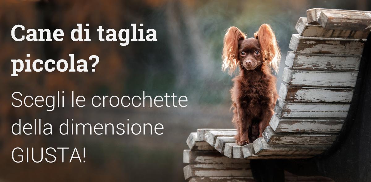 Crocchette su misura per cani di taglia piccola