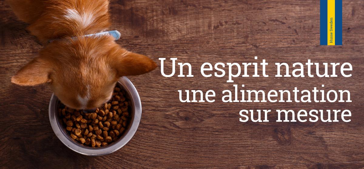 Un repas pour votre chien et votre chat offert !