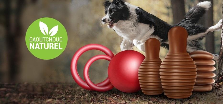 Les jouets pour chien