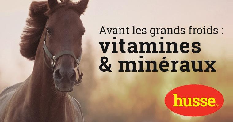 Vitamines et minéraux pour chevaux