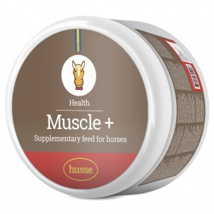 https://start.husse.com/media/catalog/product/5/0/50157-muscle-plus.jpg