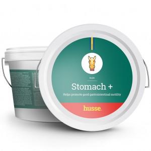STOMACH +, protector gastrico para caballos, en bote de color verde