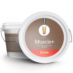 vitaminas para aumentar la masa muscular en caballos de bote marron con la bandera sueca y el logo husse MUSCLE +