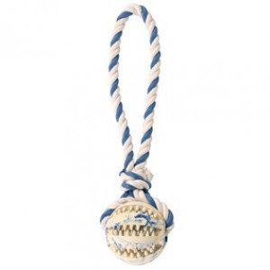 DENTAL FUN NATURAL RUBBER BALL ON A ROPE