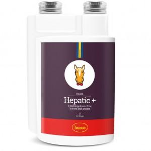Hygiène hépatic du cheval