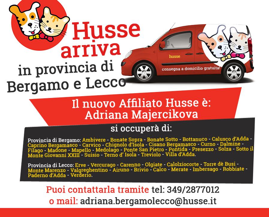 Husse a Bergamo e Lucca