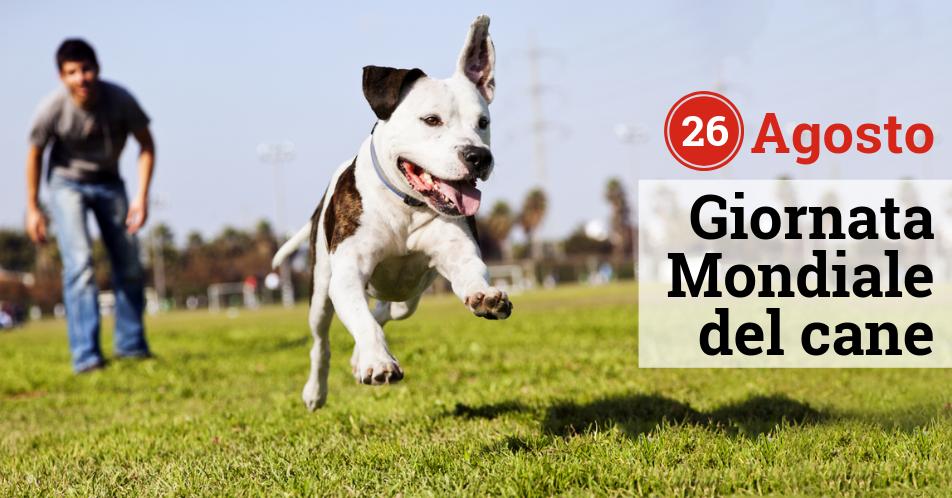 Giornata Mondiale del Cane - 26 Agosto
