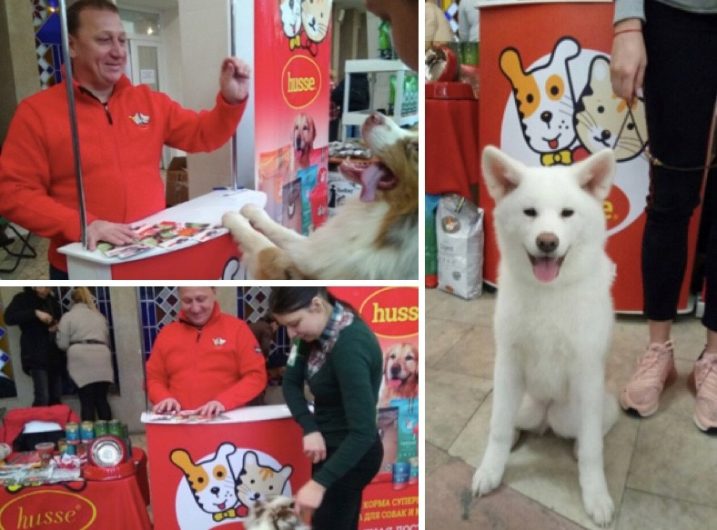 HUSSE TOOK PART IN DOG SHOW IN RUSSIA