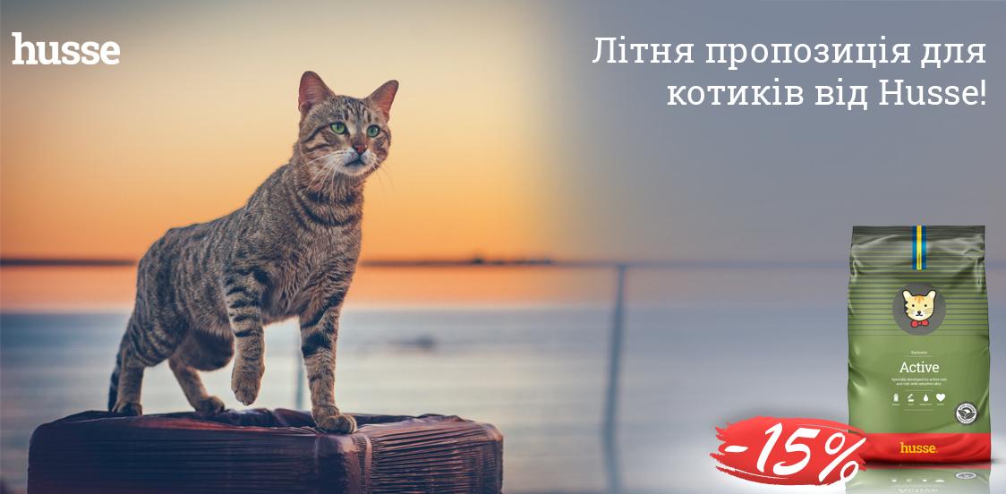 Літня пропозиція для котиків від Husse!
