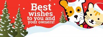 Kerst, laat het ook voor uw dier een feest zijn