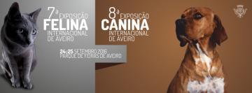 Exposição Canina e Felina Internacional de Aveiro