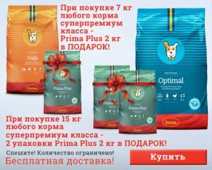 Подарки при покупке кормов суперпремиум класса!