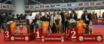 Husse Serbia sponsored International Dog Show in Belgrade