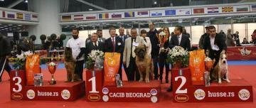 Husse Serbia sponsored International Dog Show in Belgrade