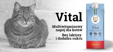 Nowość! Husse Vital - multiwitaminowy napój mleczny dla kotów.