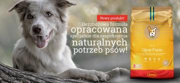Nowość! Bezzbożowa karma Husse Opus Farm dla psów dorosłych.