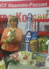 Фотоотчет с выставки кошек в г. Иваново!