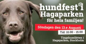 Hundfest i Hagaparken för hela familjen!