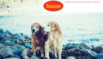 Este verano no dejes a tu mascota sin sus productos Husse