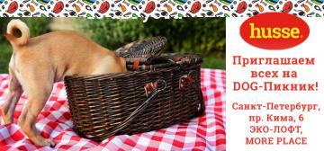 Приглашаем всех на DOG-Пикник!
