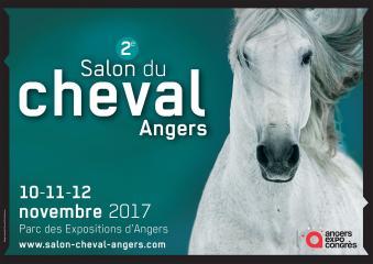 Salon du cheval d'Angers