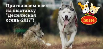 Приглашаем всех на выставку собак