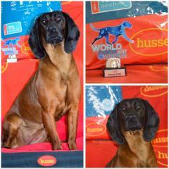 Brawura world junior winner