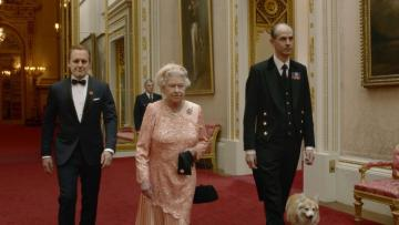 BREAKING NEWS! Royal dogs expect only the best.