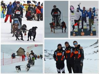 HUSSE MUSHING TEAM IN SPAIN