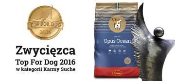 Husse Opus Ocean z tytułem Top for Dog 2016!