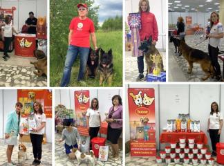 HUSSE PARTICIPATED IN THE INTERNATIONAL DOG SHOW IN RUSSIA