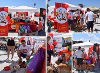 HUSSE TOOK PART IN CHARITY EVENT IN BOSNA AND HERZEGOVINA