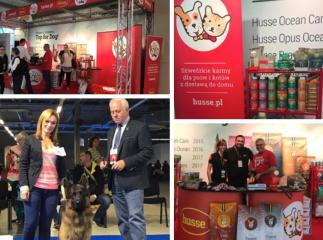 HUSSE RUSSIA PARTICIPATES IN THE EURO DOG SHOW 2018 IN POLAND