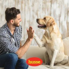 30 ноября - Всемирный день домашних животных.