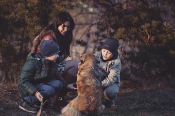 Propósitos de 2019 para la vida de las mascotas