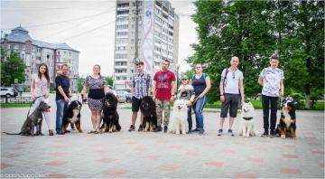 Выставка собак в г.Бор