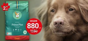 Корм для собак и щенков со скидками