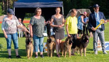 Hussen Kasvattajakerholaiselle menestystä Belgianpaimenkoirien erikoisnäyttelyssä 2019