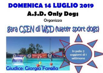 Gara CSEN di WSD (Water Sport Dogs)