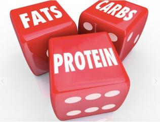 ¿CUÁLES NUTRIENTES PROPORCIONAN ENERGÍA?