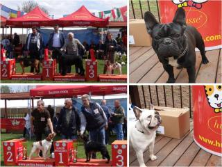 HUSSE PARTICIPATES IN SEVERAL EVENTS IN SERBIA