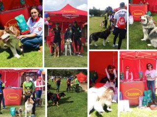 HUSSE TOOK PART IN CHAMPIONSHIPS OF CANICROSS AND BIKEJORING IN COLOMBIA