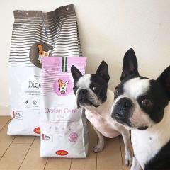 Аллергены в корме для собак